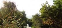 Propriété de Maître exceptionnelle avec vue magnifique, Tanger