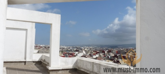 Appartement neuf avec grande terrasse ensoleillée étage élevé