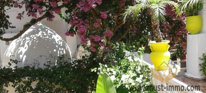 Stunning and surprisingly large riad with garden and parking old Medina of Asilah