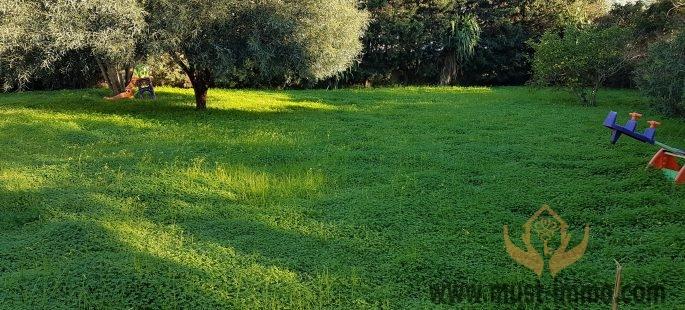 Villa située dans un écrin de verdure à proximité du Golf de Tanger