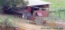 Ferme (titrée) à vendre dans la région d'Asilah