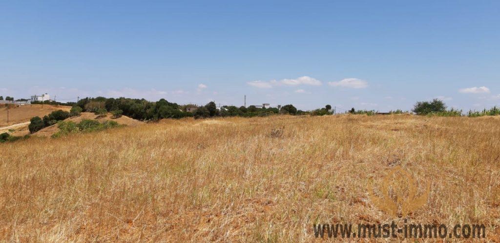 Région de Asilah, terrain à vendre
